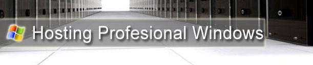 Hosting Profesional Windows